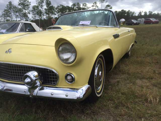 1955 t bird for sale